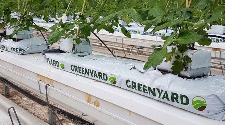 sustainable-and-resilient-cultivation-on-organic-substrates