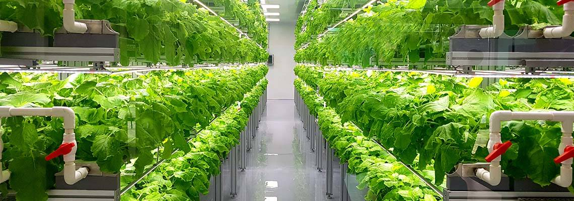 podcast-on-vertical-and-urban-farming
