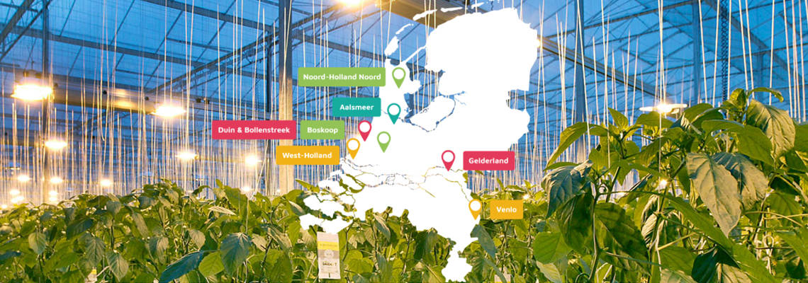 Greenports Nederland, an umbrella network organization for horticulture in the Netherlands, is actively searching for more international cooperation to make horticulture worldwide more sustainable and to exchange even more knowledge. That's what chairman Adri Bom-Lemstra says in an interview with GreenTech. She is also a representative of the province of South Holland, where most of the horticultural companies in the Netherlands are located.