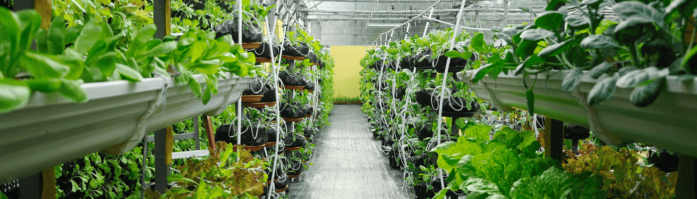 greentech-2019-addresses-crop-production-challenges